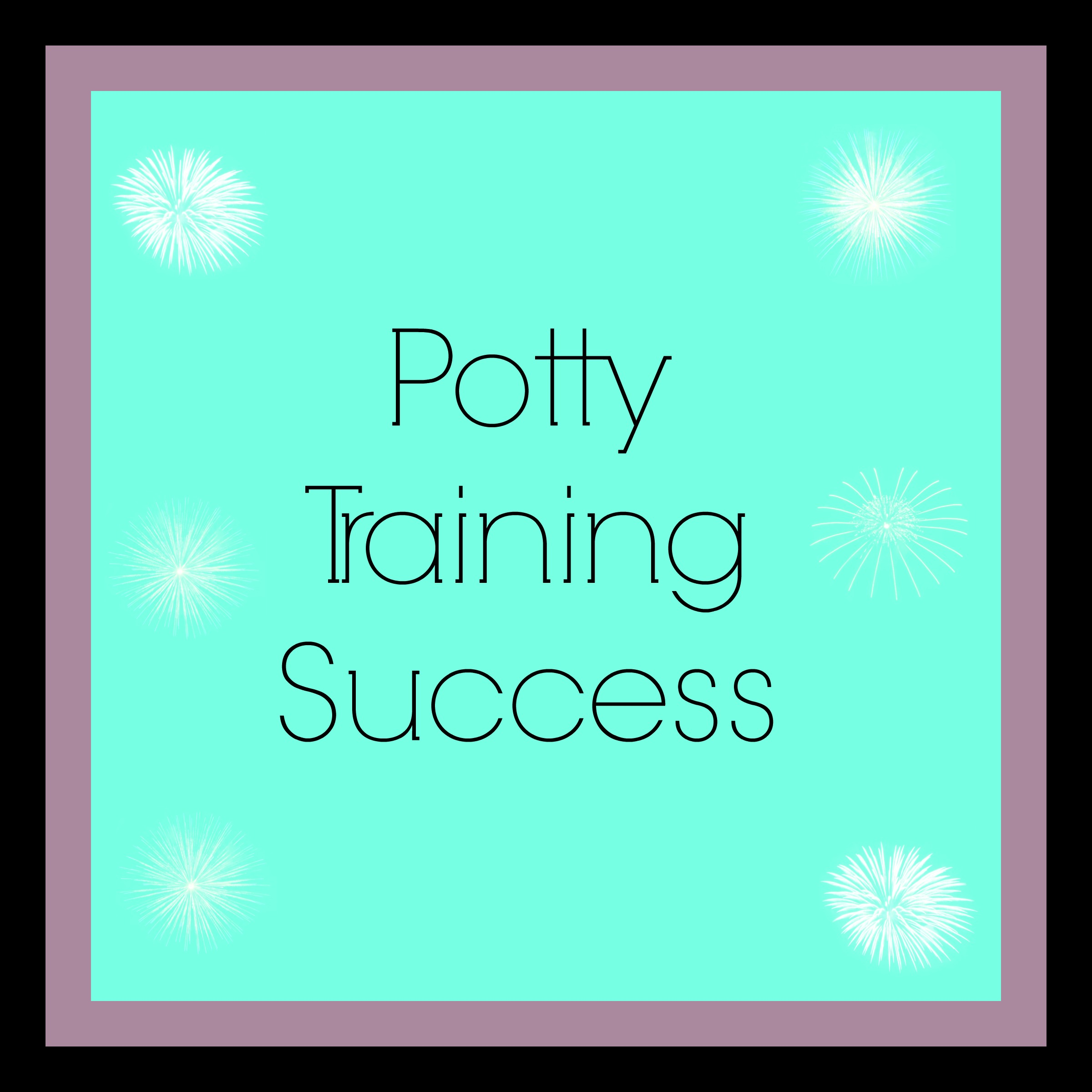 Potty Training Cover